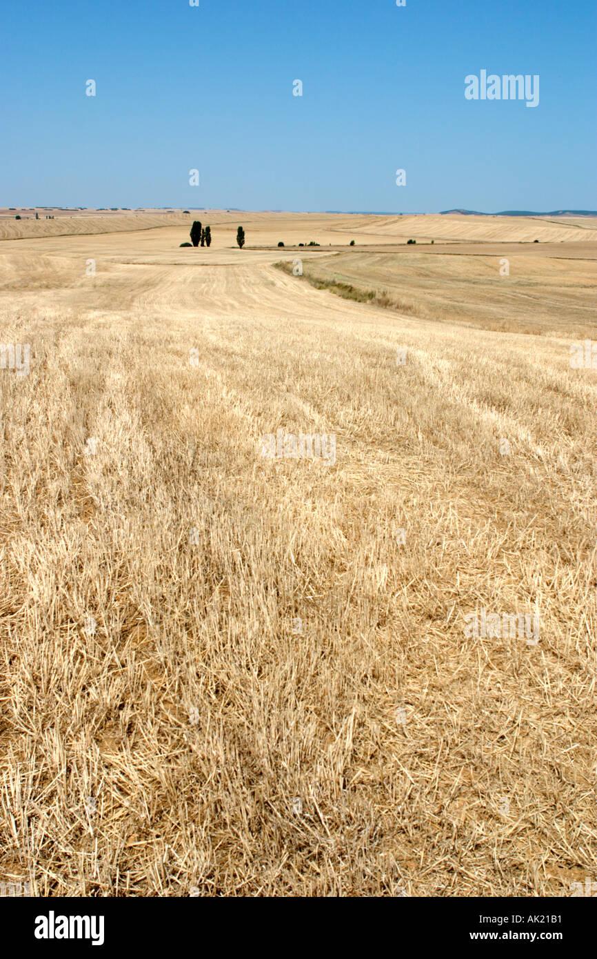Countryside near Leon Castilla y Leon Spain - Stock Image