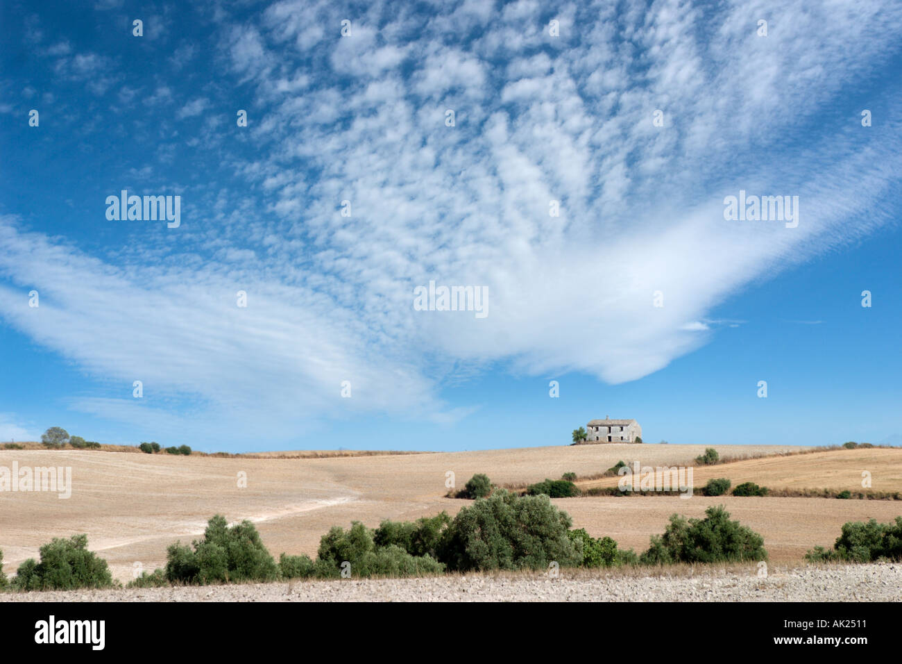 Rural landscape in the Ronda Region, Andalucia, Spain - Stock Image