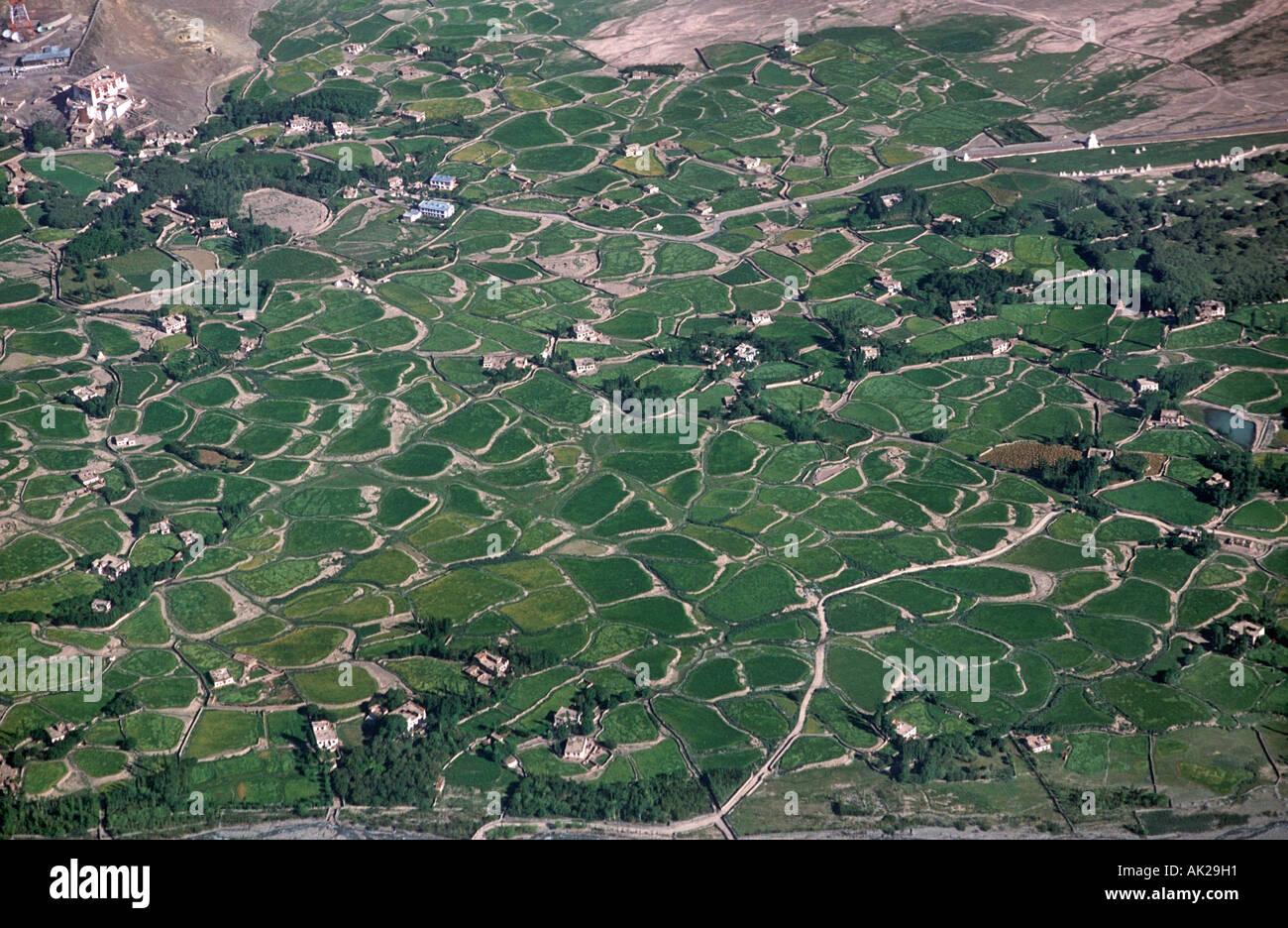 View of lush irrigated fields in the valley beside Stok Palace near Leh Ladakh Northern India viewed from an airliner on the ap - Stock Image