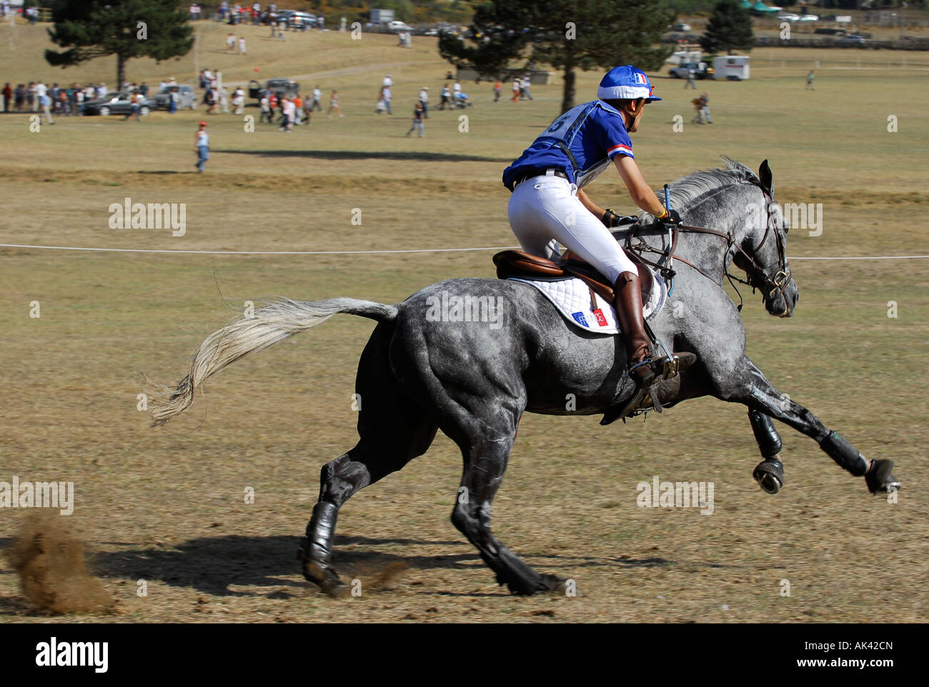 Nicolas Touzaint, winner of the 2007 European Three Day Eventing Championships in Pratoni Italy on the cross country - Stock Image