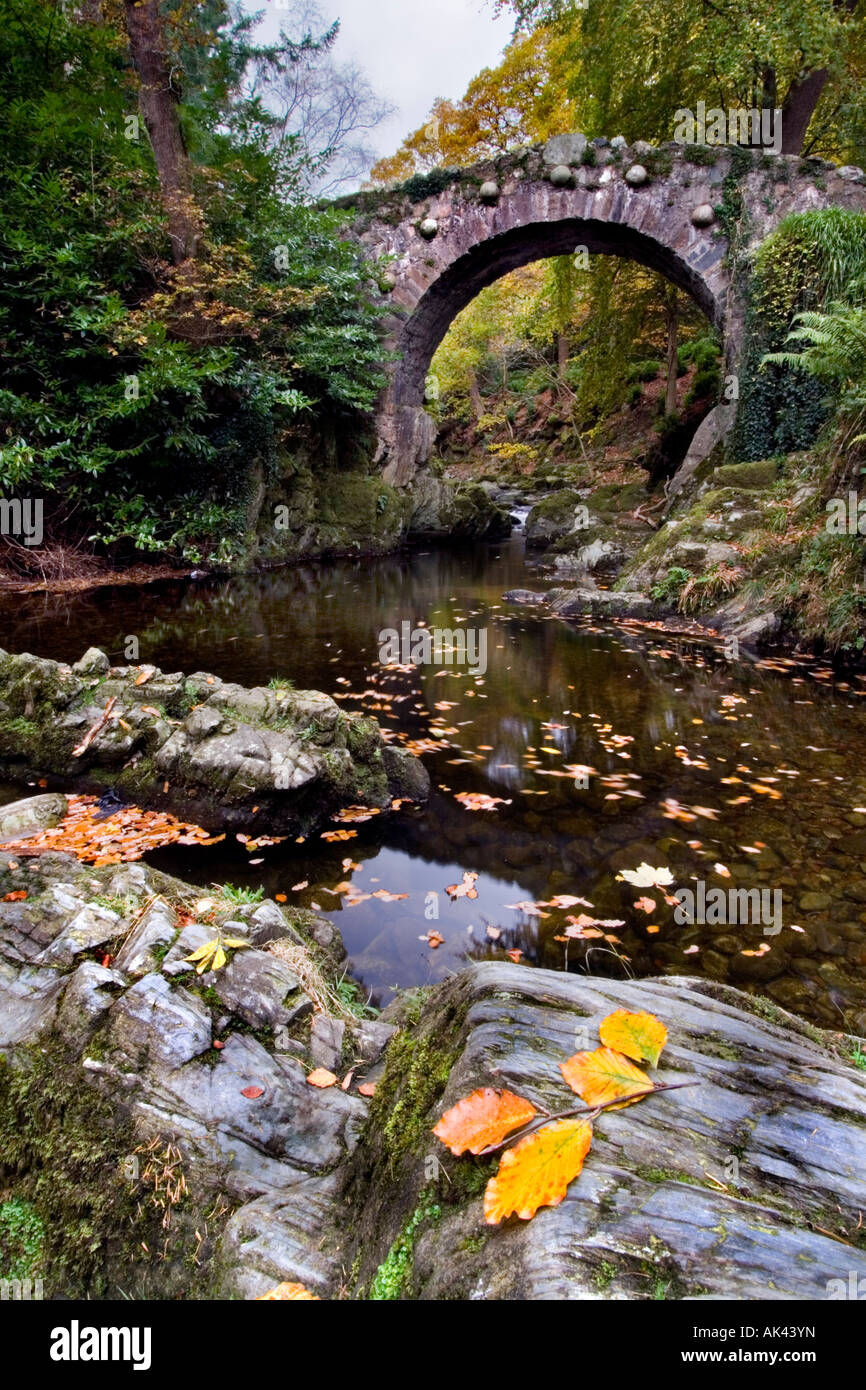 Foley's Bridge, Tollymore Stock Photo