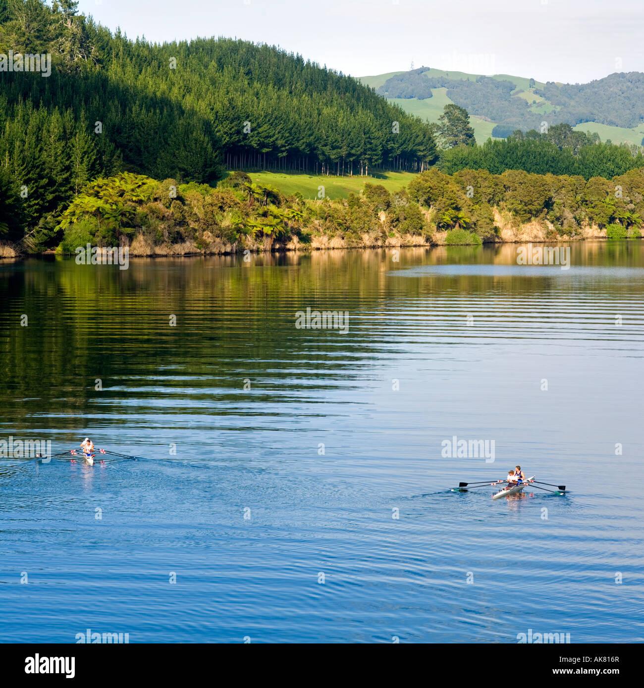 Rowing training on the Waikato River New Zealand - Stock Image