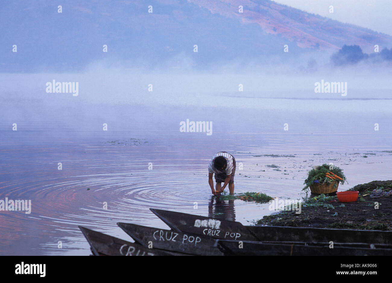 Washing vegetables in the waters of Lake Atitlan Santiago Atitlan Guatemala - Stock Image
