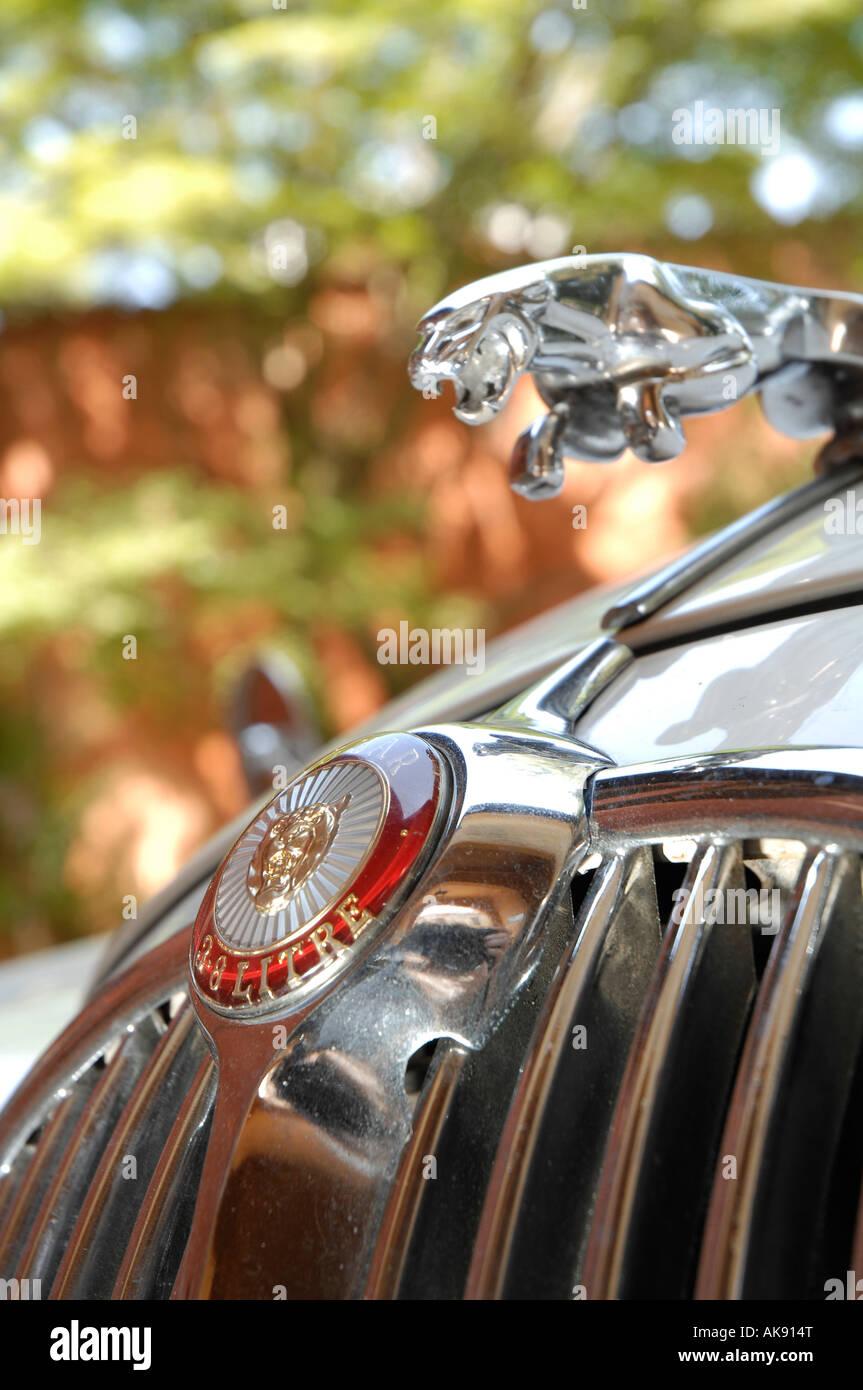 1963 Jaguar Mk2 badge and mascot detail - Stock Image