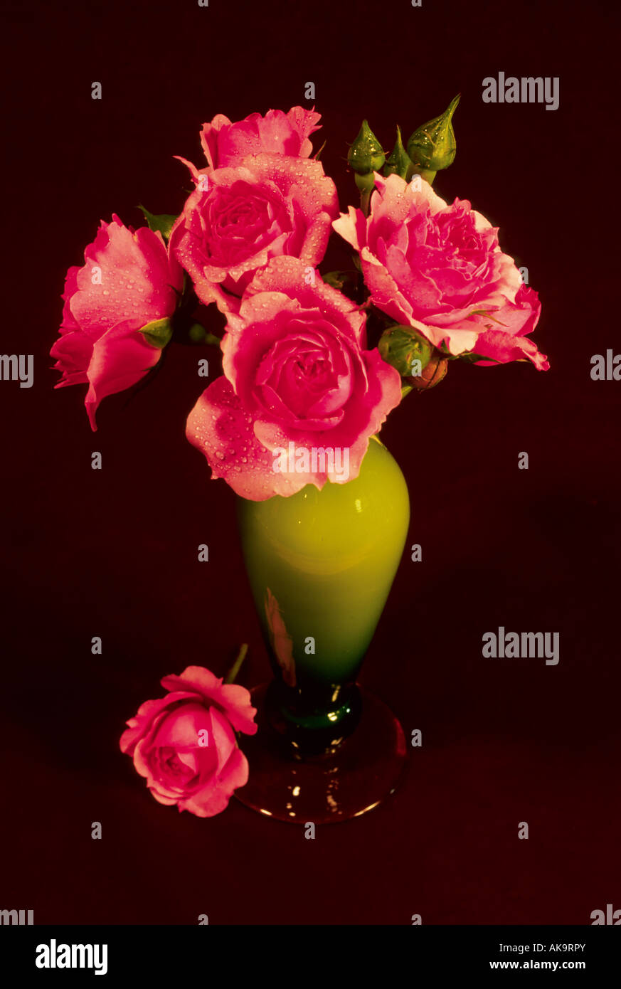 Red Roses Bouquet In Vase Flower Flowers Botanical Floral Red Pink