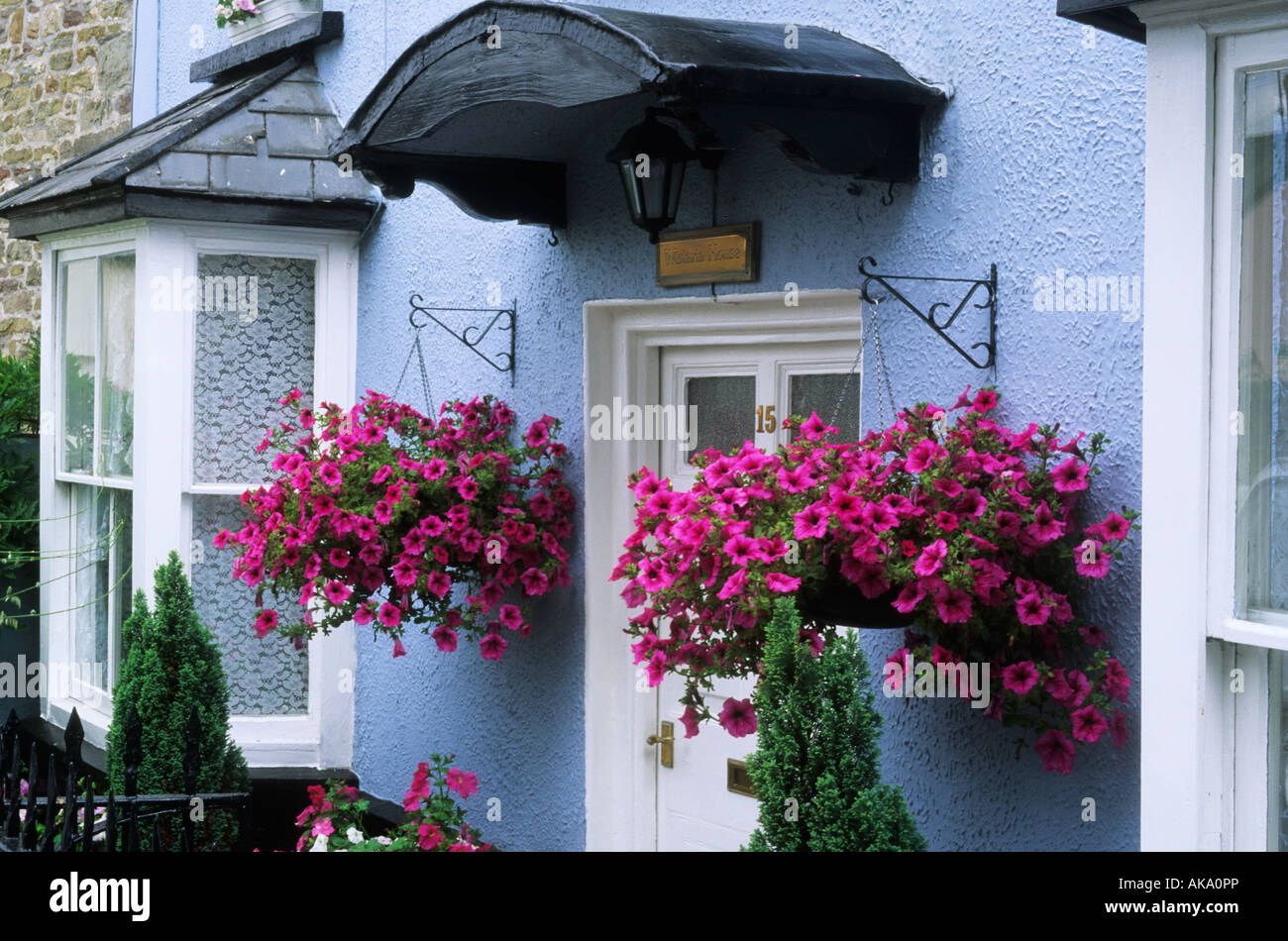 Summer Flower Hanging Basket With Pink Petunuas Front Garden Door