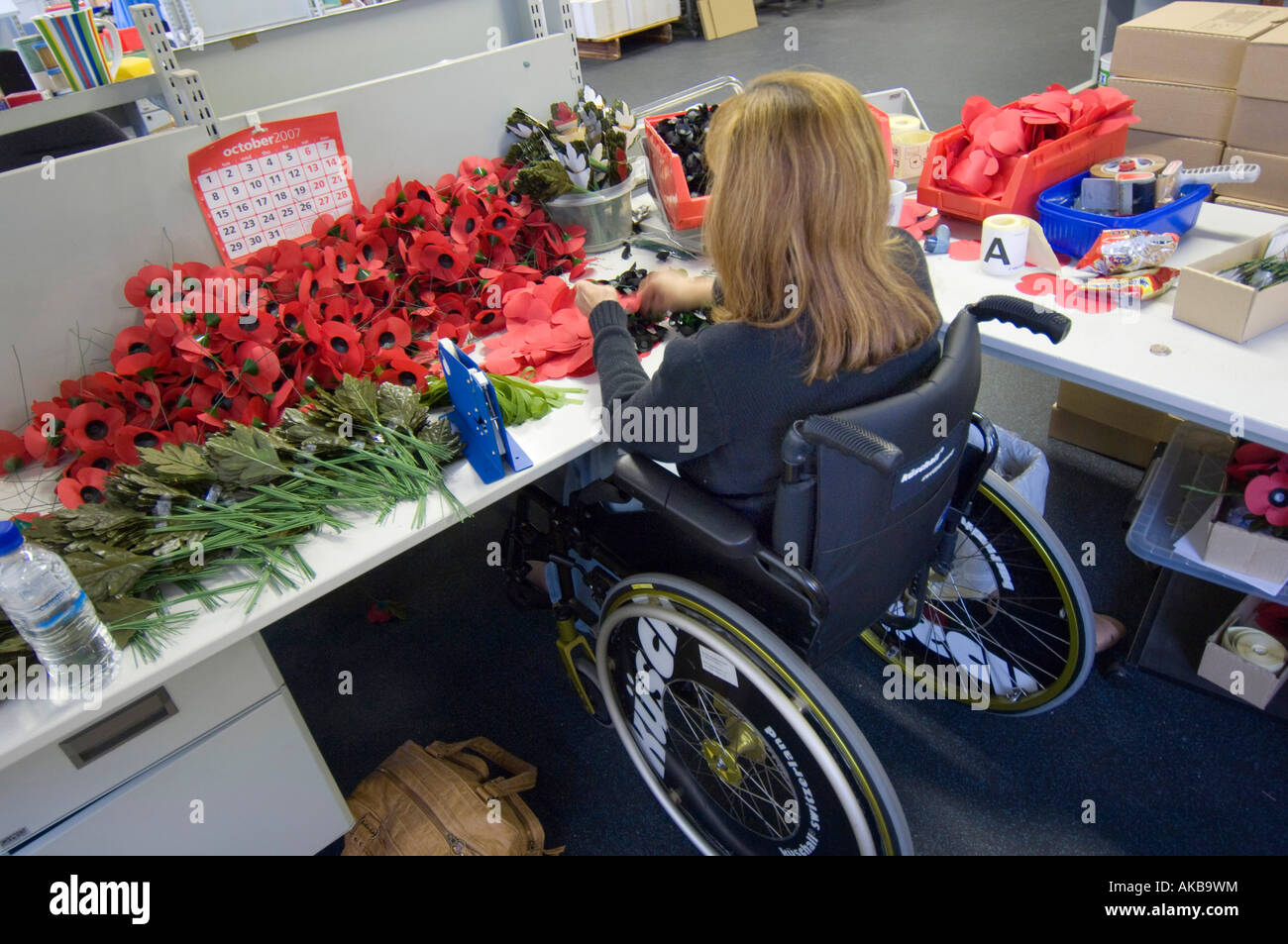 Disabled poppy maker making poppies from her wheelchair at the British Legion Poppy factory at Richmond Surrey - Stock Image