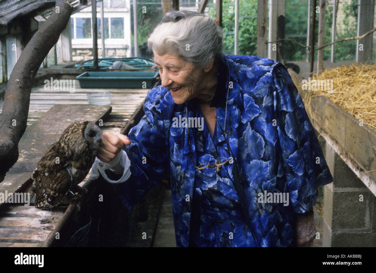 Ashton Wold Peterborough Miriam Rothschild in her glass house with tawny owl 1991 Stock Photo