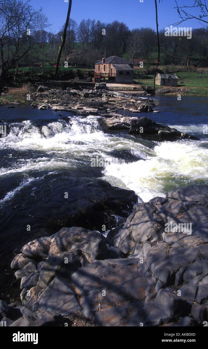 Eden Lake Stream
