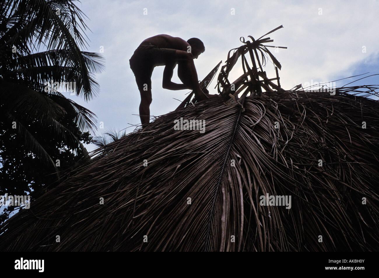 Man thatching roof on a bohio in Barigua near Baracoa Cuba - Stock Image