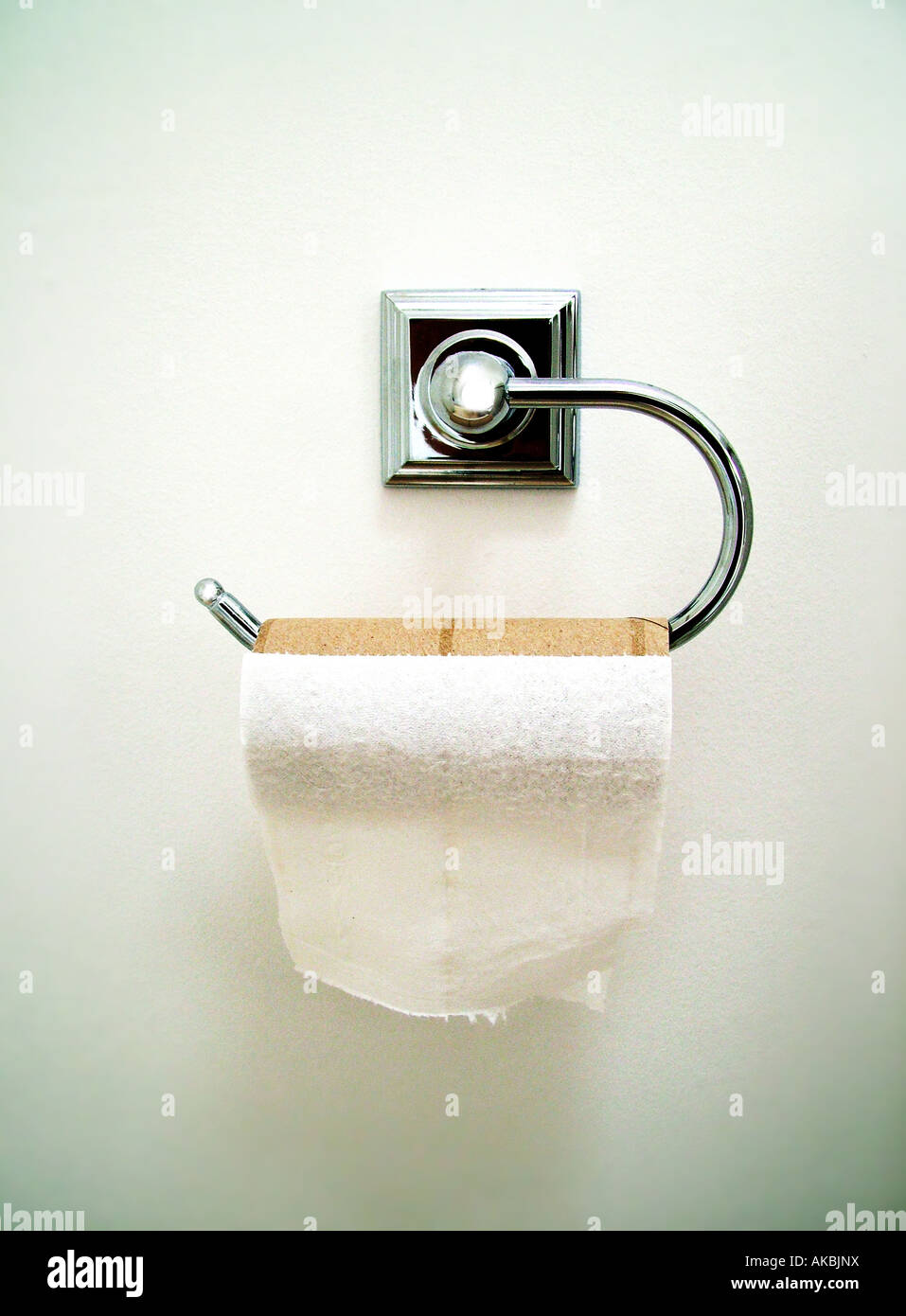 toilet roll - Stock Image