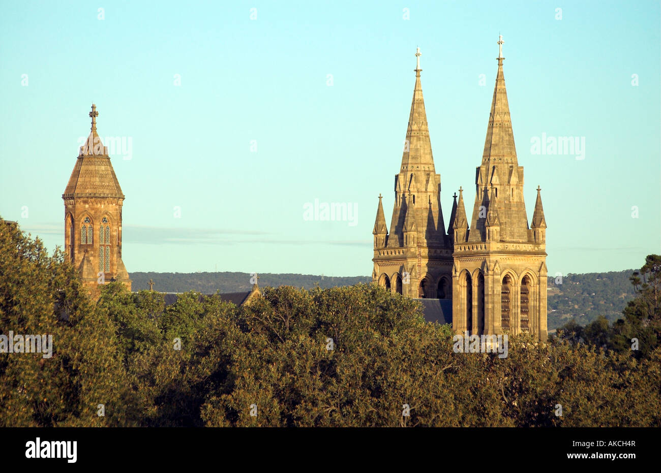 A summer evening casts a warm light over St Peter's Cathedral in Adelaide, viewed from Montefiore Hill - Stock Image