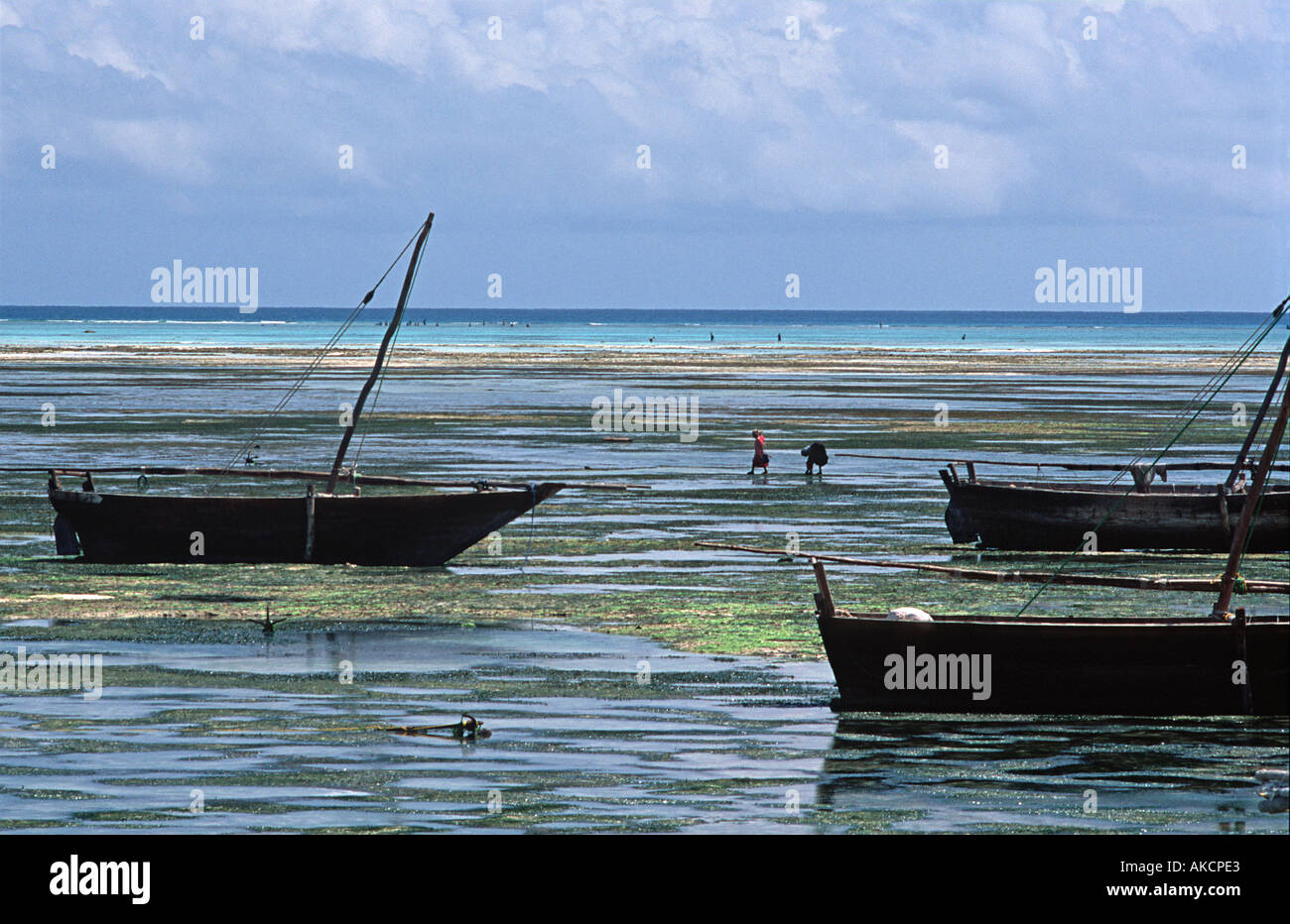 Silhouetted dhows Local villagers flock out at low tide to collect seashells and seaweed Nungwi Unguja Zanzibar Tanzania - Stock Image