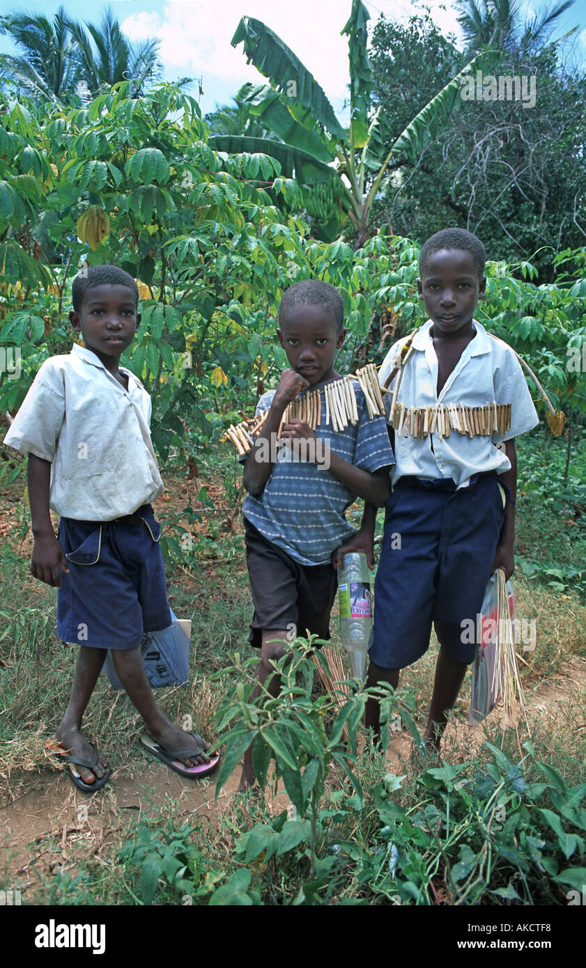 Boys from Chole in school uniform Chole lies in the Indian Ocean next to Mafia island Tanzania East Africa - Stock Image