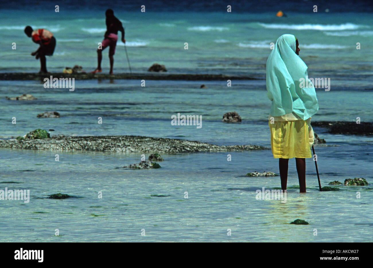 Children from Nungwi collecting sea shells and cockles at low tide Nungwi Unguja Zanzibar Tanzania East Africa - Stock Image