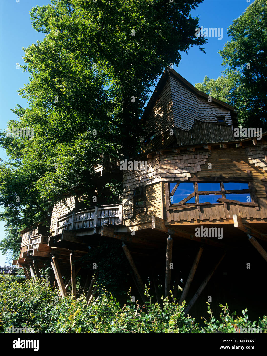 Picture of: The Worlds Largest Tree House At Alnwick Gardens In Northumberland Stock Photo Alamy