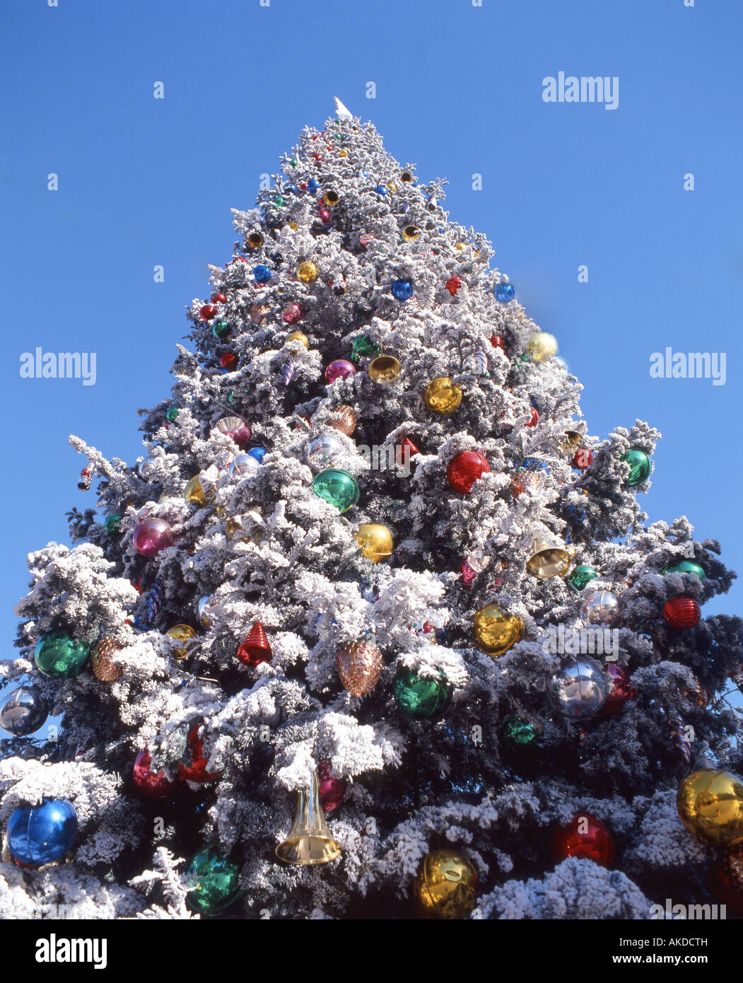 festivals christmas outdoors christmas tree with decorations