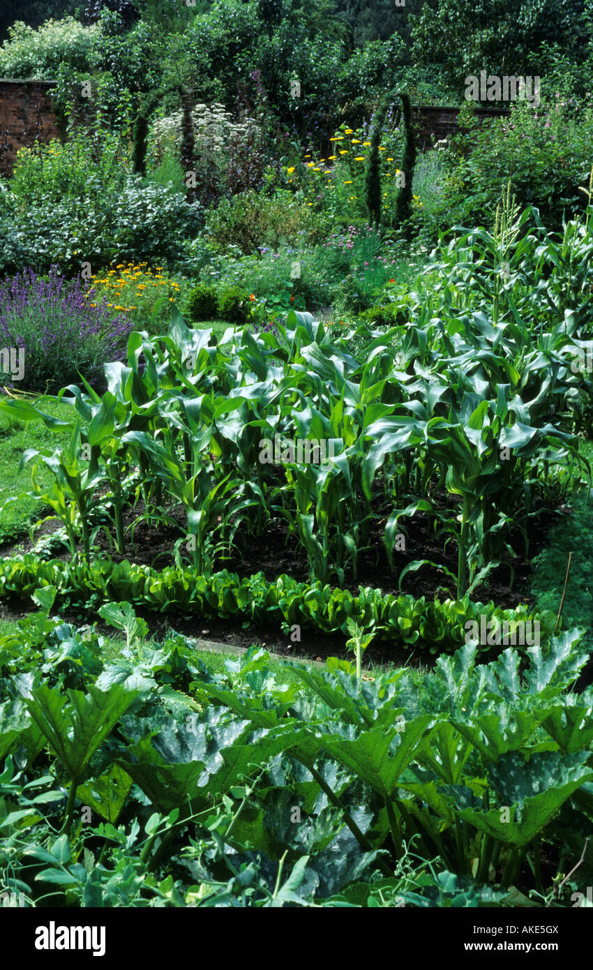 Gardener s Cottage Cheshire country cottage kitchen garden with view through to flower garden - Stock Image