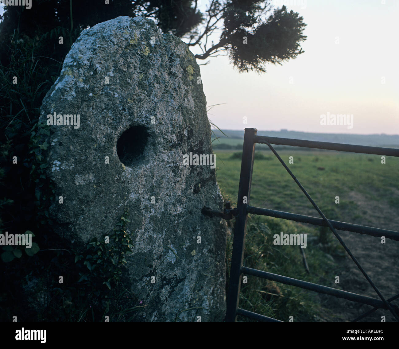 Ancient holed stone being used as a gatepost by the roadside in the village of Boleigh Cornwall - Stock Image