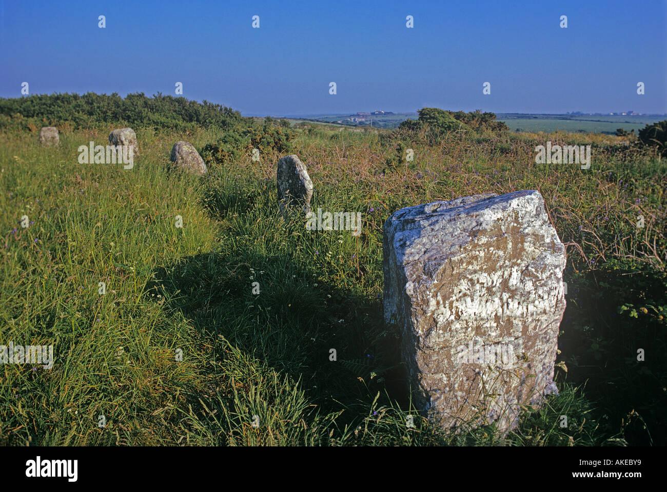 Boscawen un Stone Circle near Lands End is 25 feet across and contains an unusual quartz stone - Stock Image