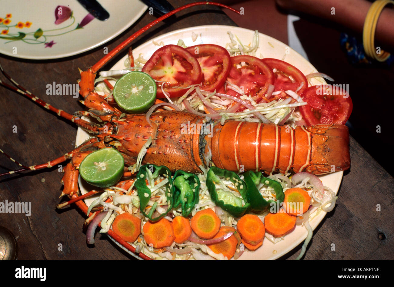 Indien, Goa, Spiny lobster at a plate - Stock Image