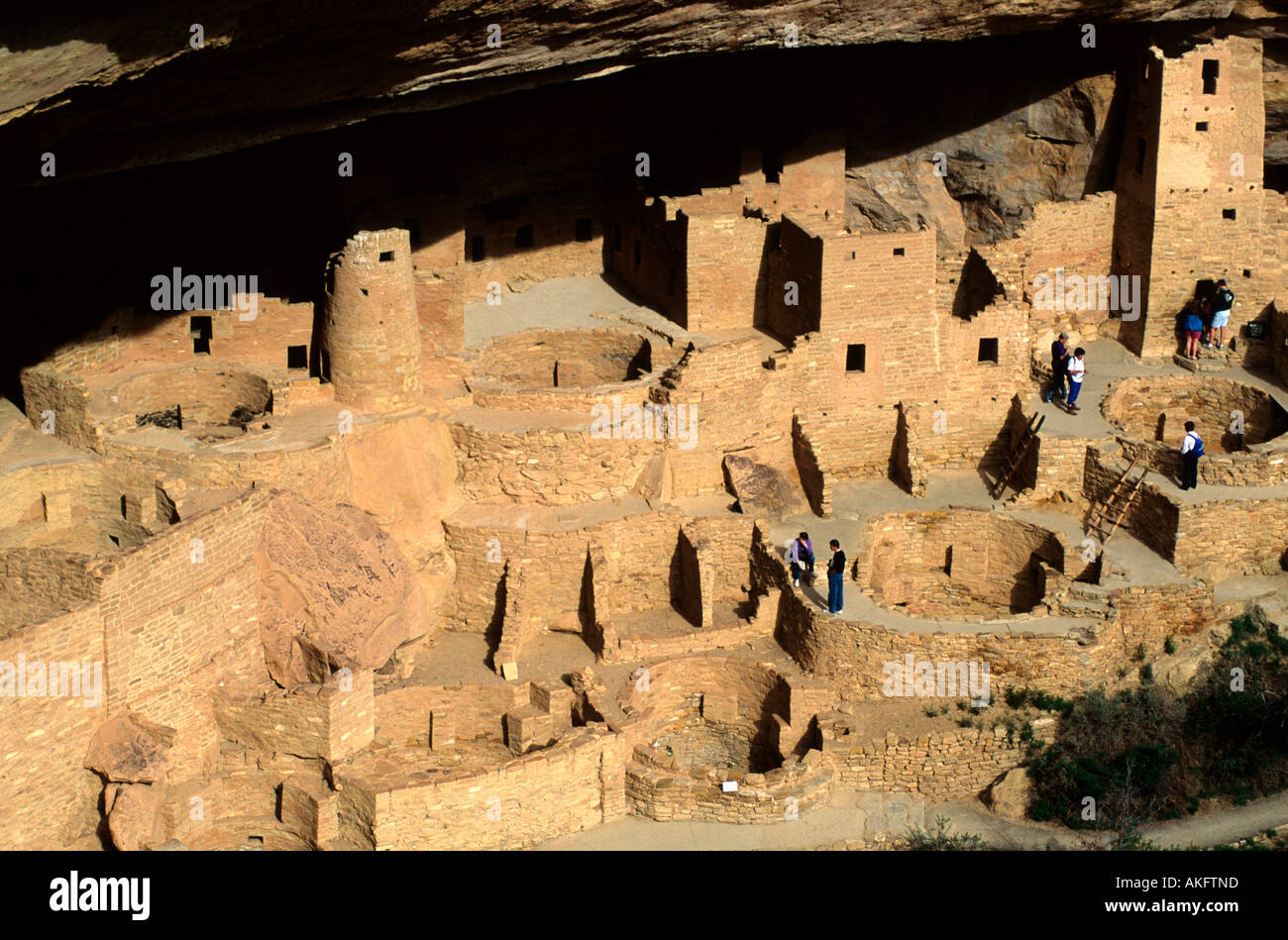 USA, Colorado, Mesa Verde Nationalpark, Cliff Palace Stock Photo