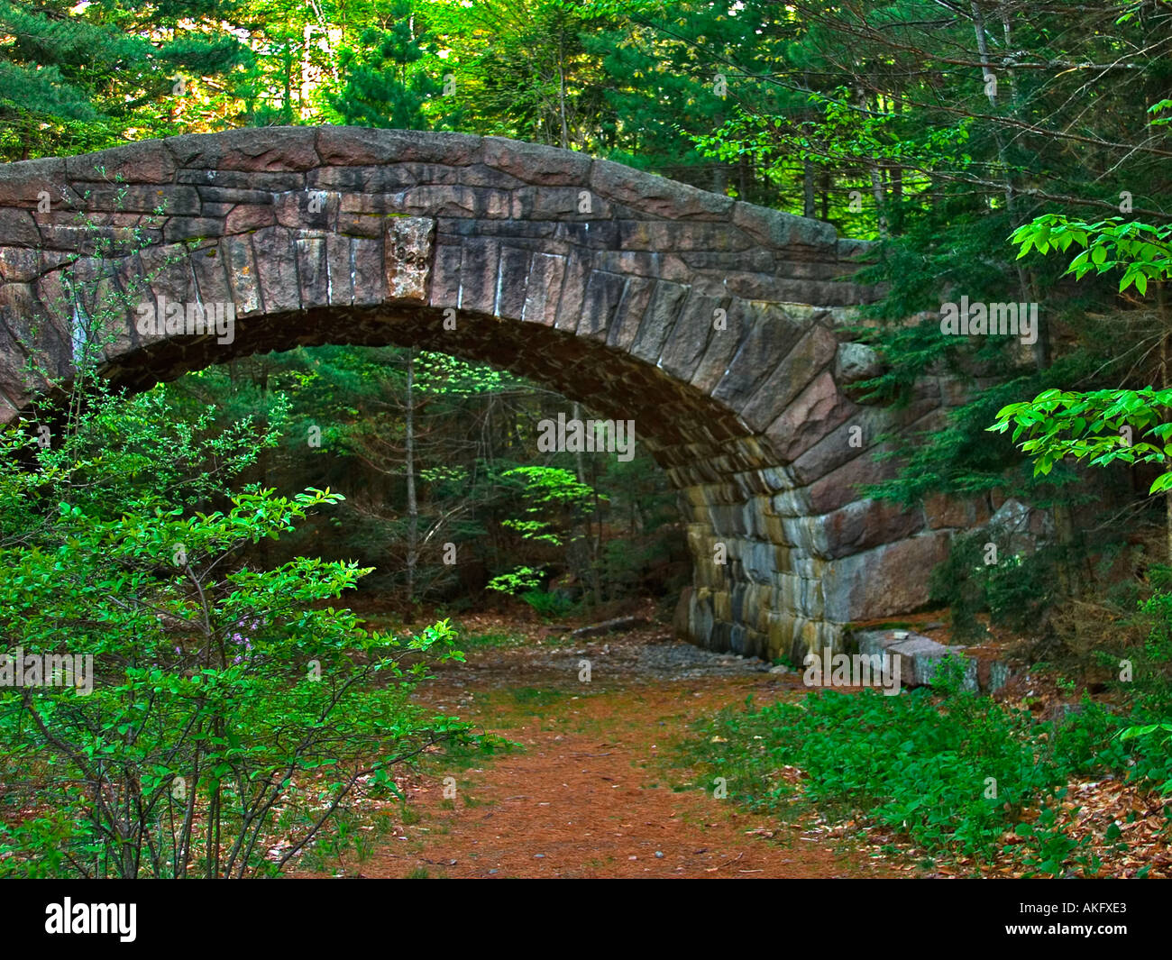 Stone bridge over a carriage road in Acadia National Park Maine - Stock Image