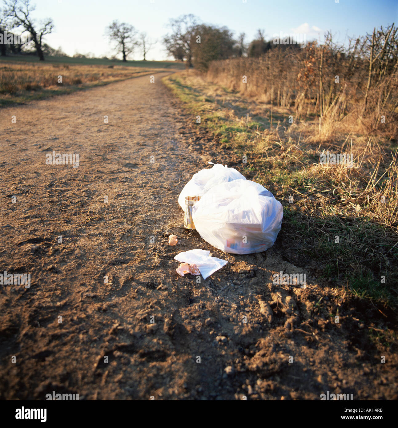 Rubbish left by a path Stock Photo