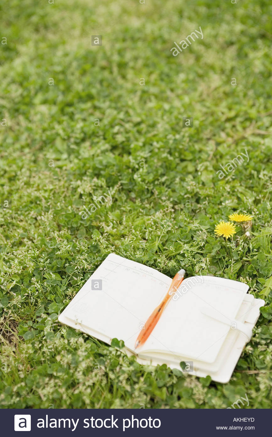 Diary in a field - Stock Image