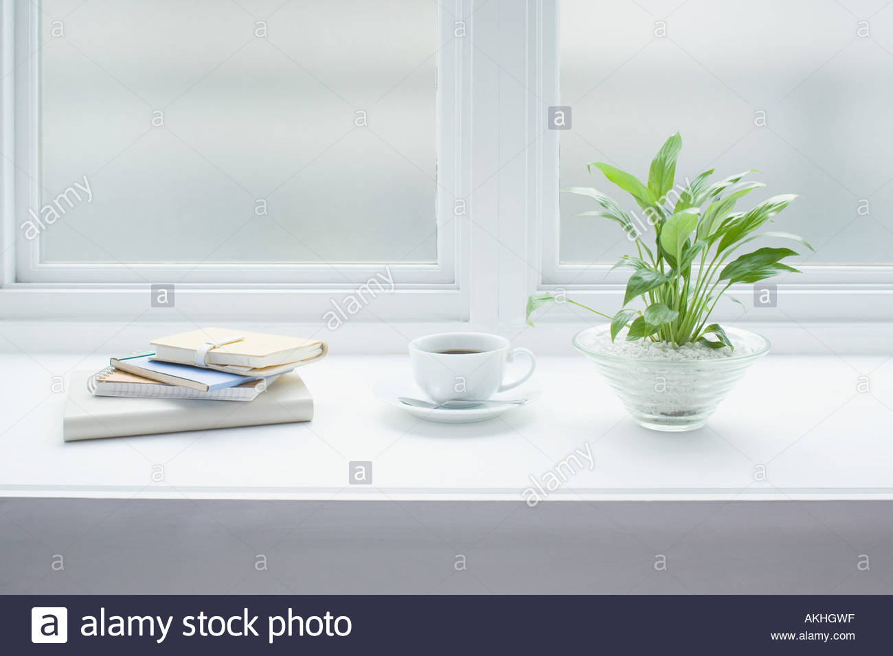Coffee and a plant on windowsill - Stock Image