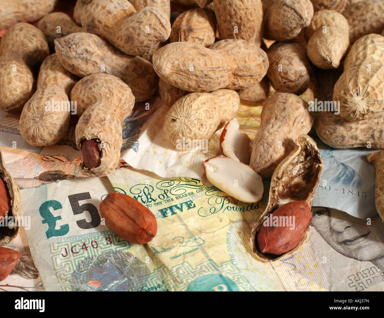 Are you working for peanuts That s what some companies offer Perhaps its time for another job or to go it alone - Stock Image