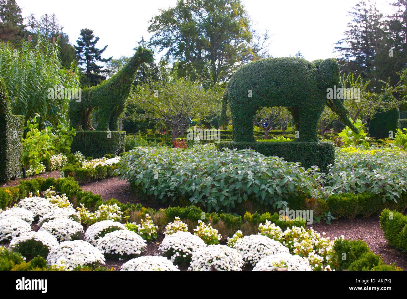 green animals topiary garden portsmouth rhode island stock image - Green Animals Topiary Garden