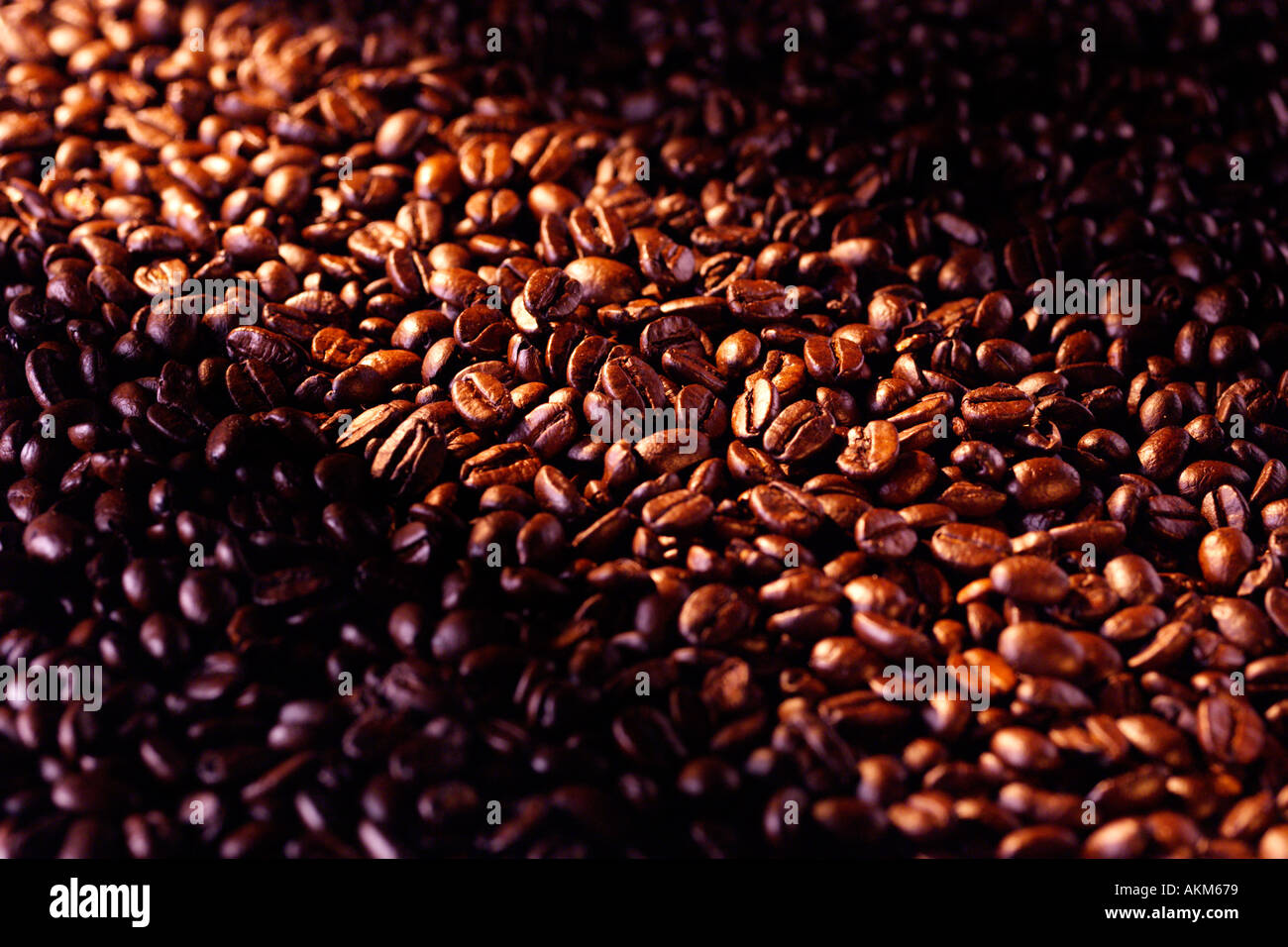 MASS OF COFFEE BEANS WITH RAY OF SUNLIGHT - Stock Image