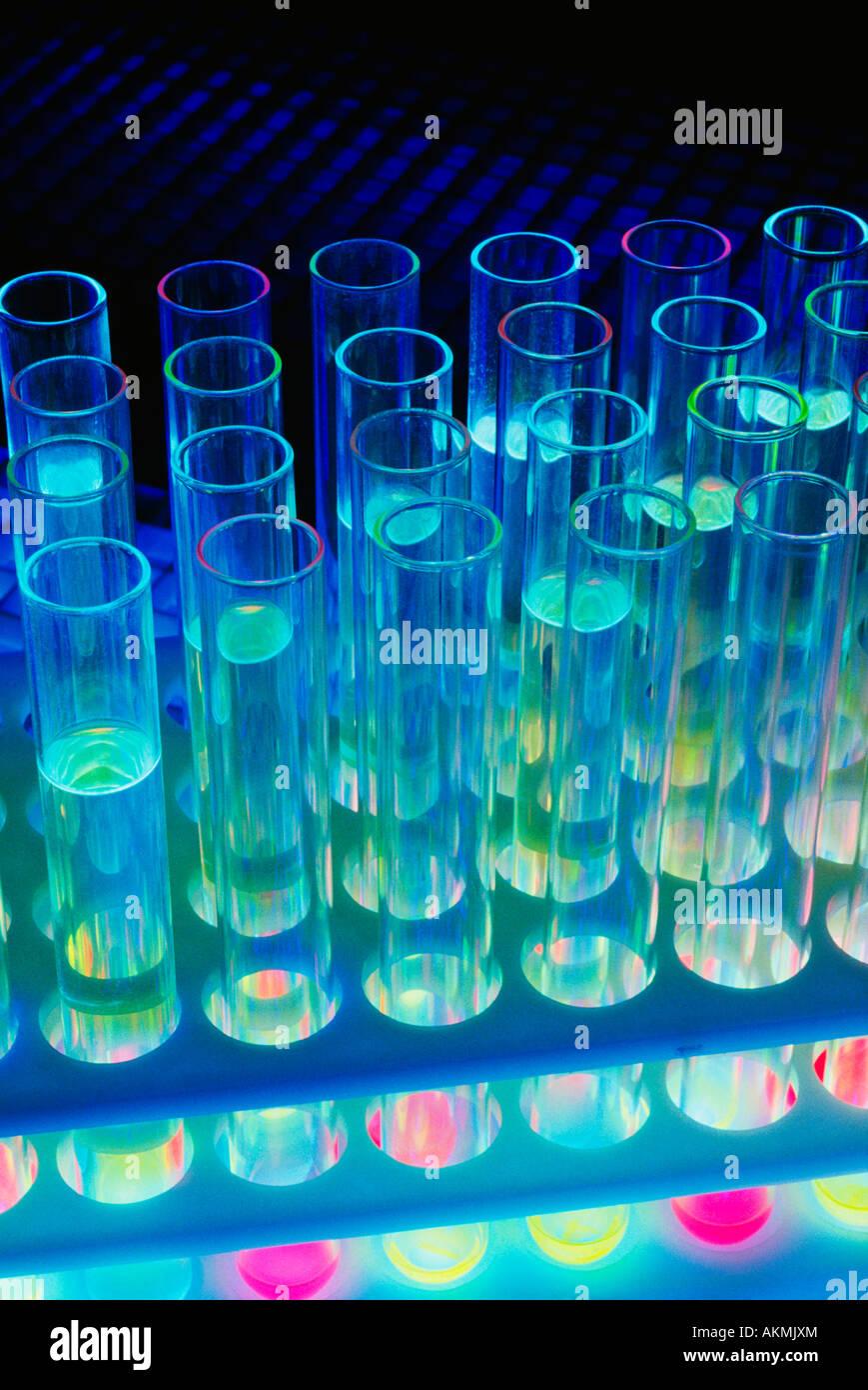 Test tubes in test tube rack - Stock Image