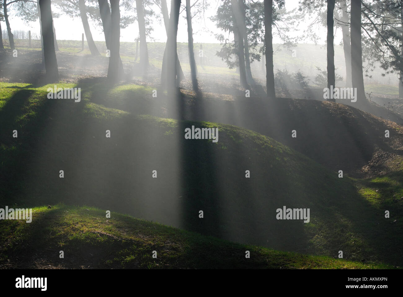 Preserved World War One trenches, shell craters in morning mist, Sheffield Memorial Park, Somme, France - Stock Image