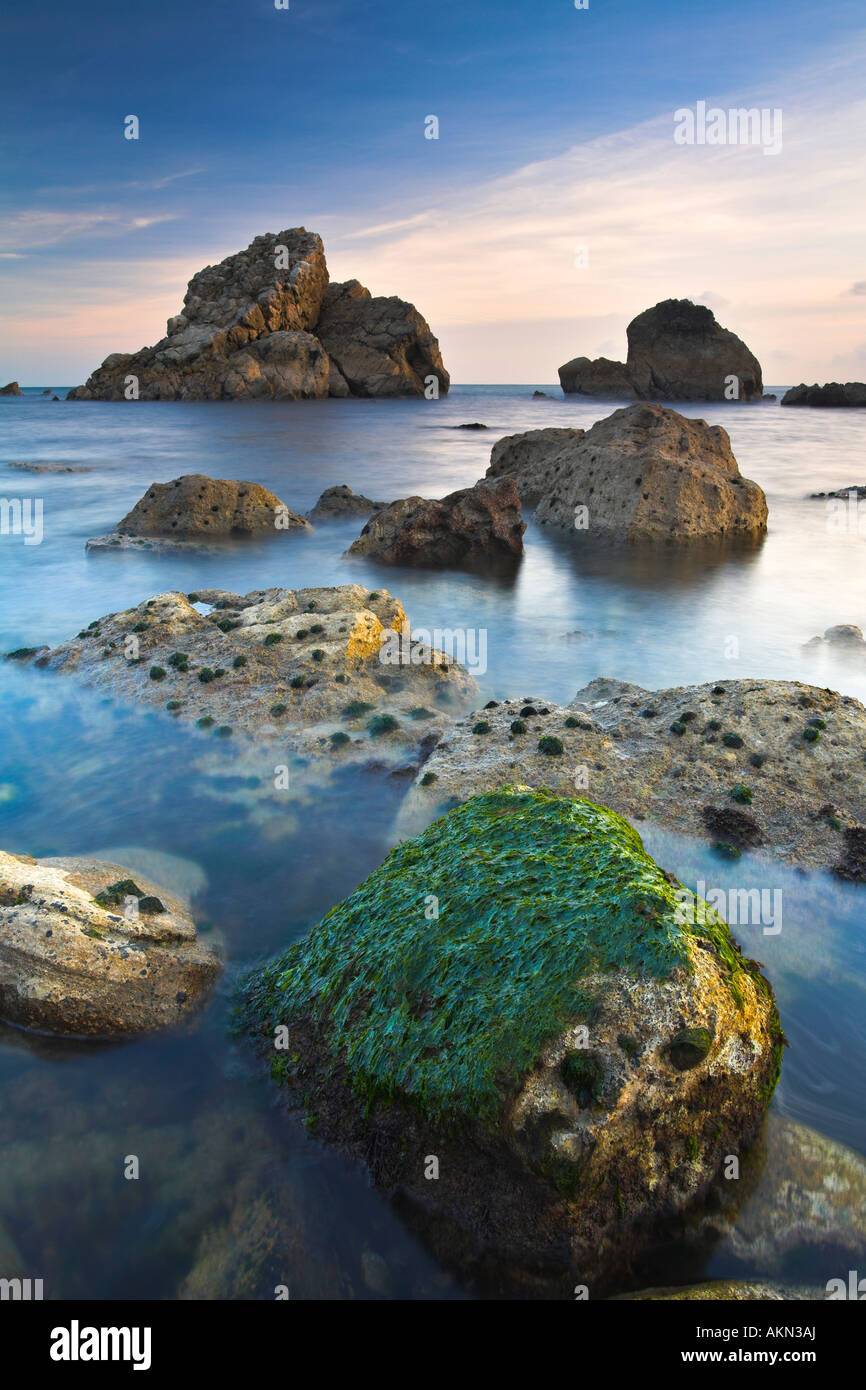 Rocky ledges and sea stacks of Mupe Rocks on Dorsets Jurassic Coast - Stock Image