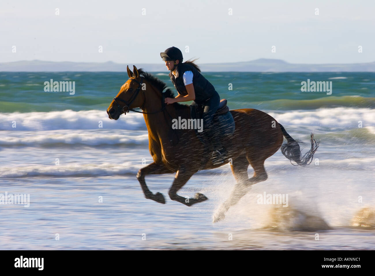 Young woman rides a bay horse on Broad Haven Beach Pembrokeshire Wales United Kingdom - Stock Image