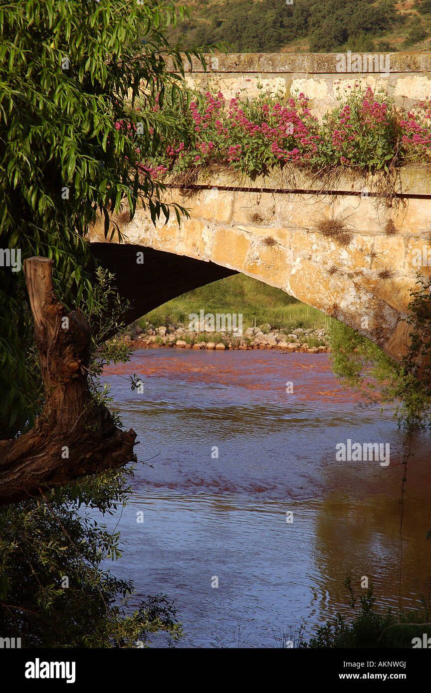 Castilian stonework glowing on an ancient bridge in Covarrubias - Stock Image