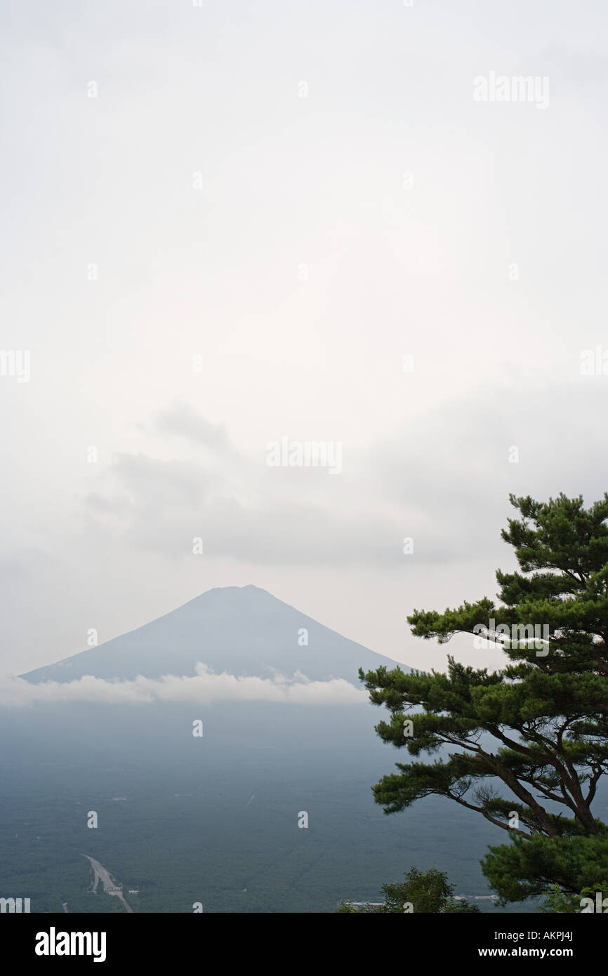 Mount fuji - Stock Image
