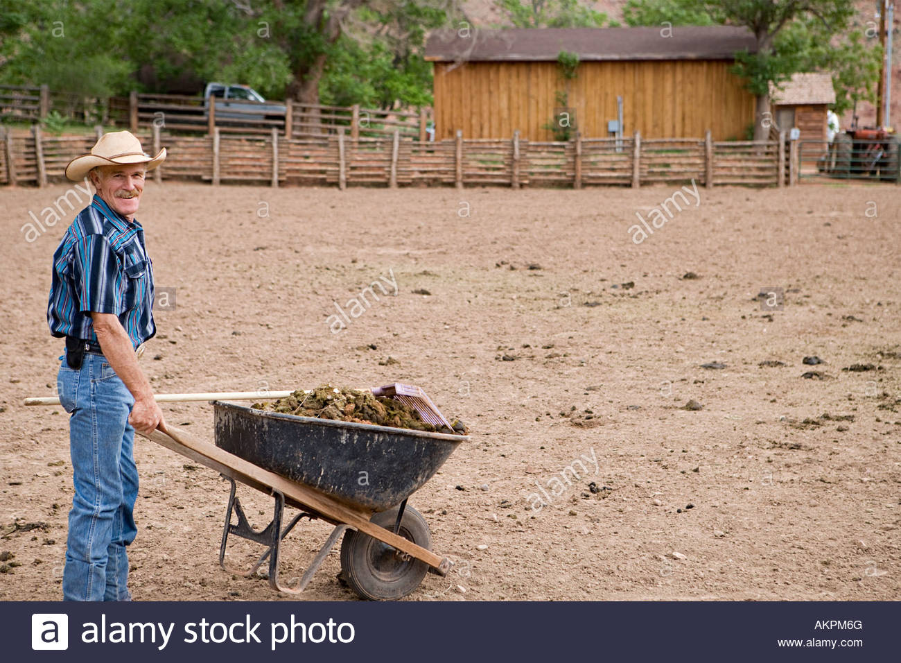 Man with wheelbarrow of dung - Stock Image