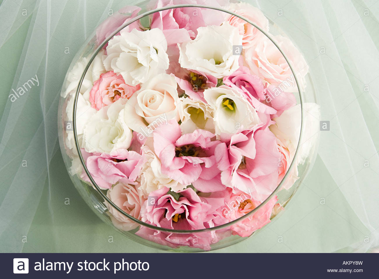 Roses in a round bowl - Stock Image