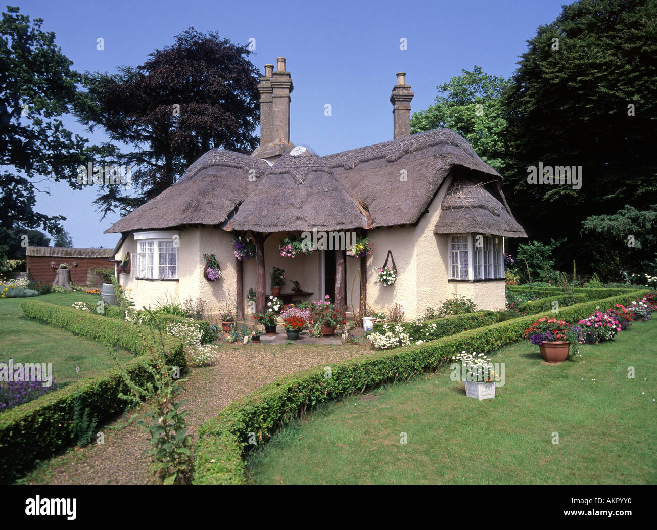 Somerleyton village thatched roofed cottage and garden - Stock Image