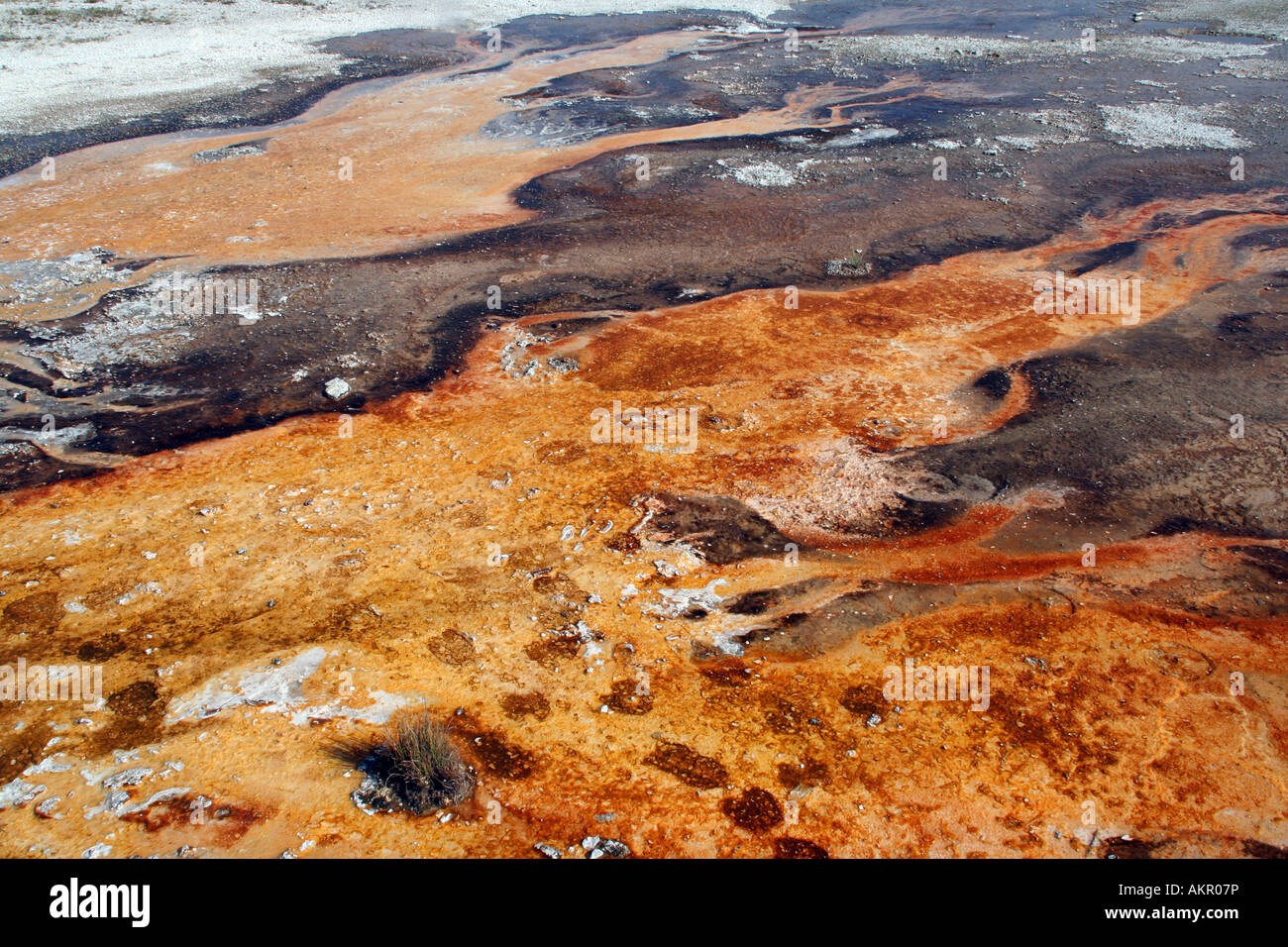 Thermal features, runoff channel near Sapphire Pool, Biscuit Basin, Yellowstone National Park - Stock Image