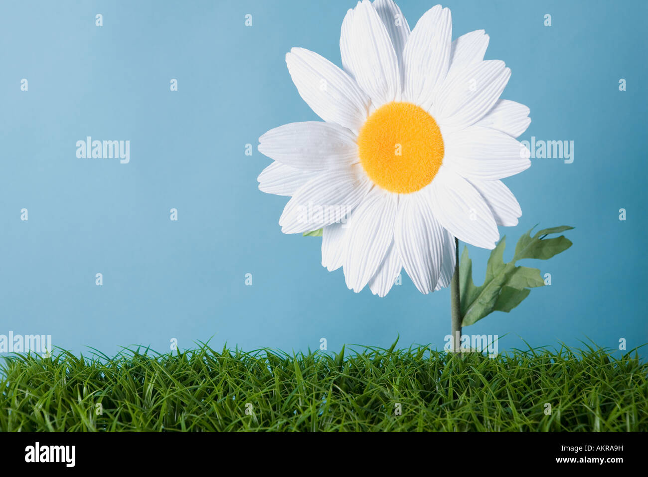 A fake flower - Stock Image
