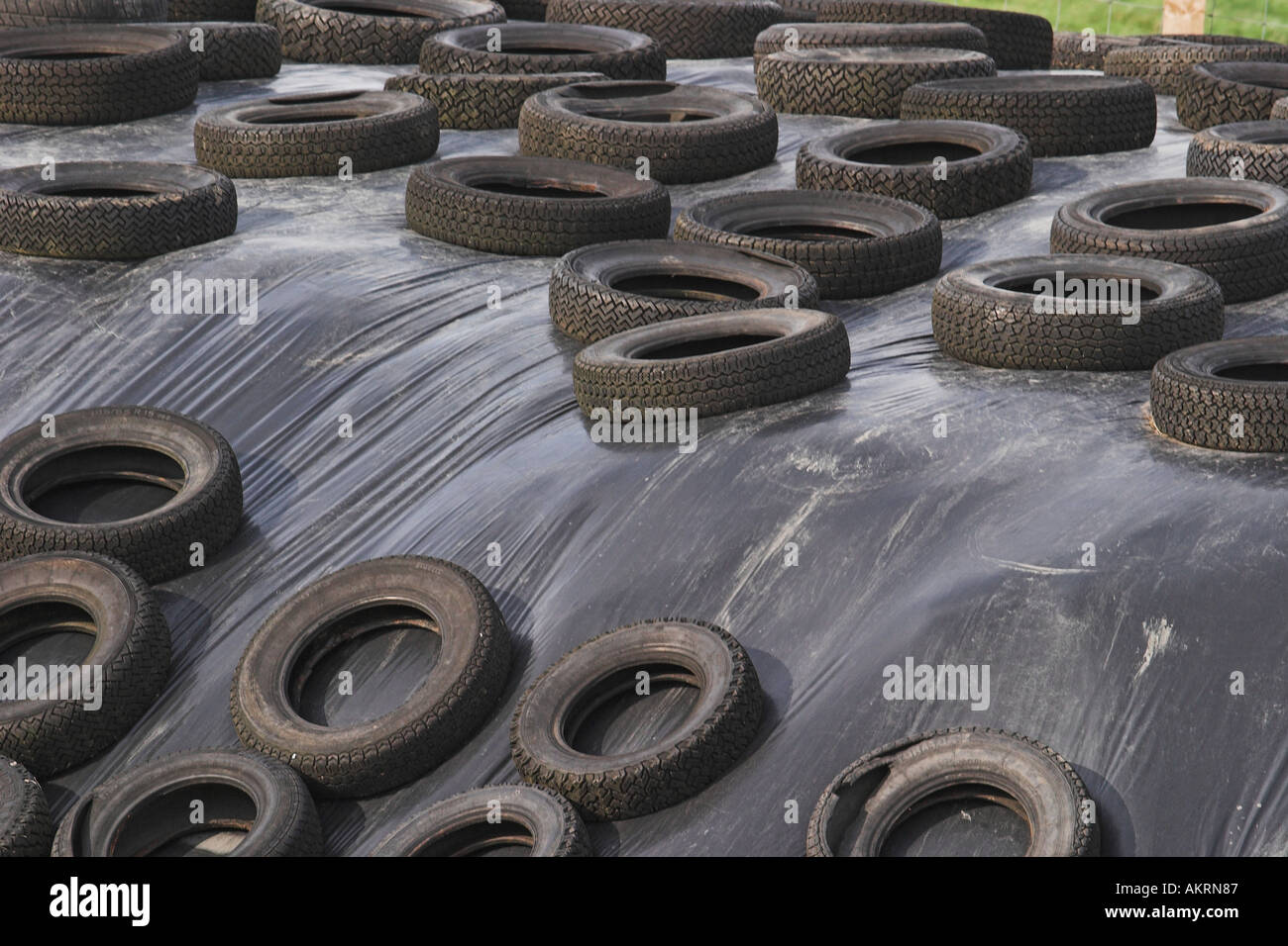 Old Car Tyres Being Used In Farmyard Uk Stock Photo 4917638 Alamy