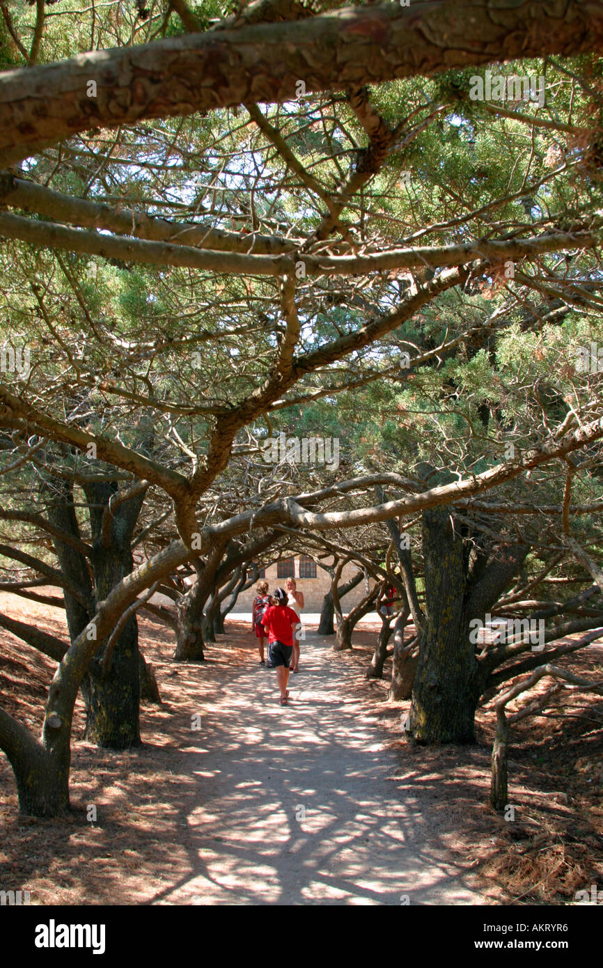 The wonderful three-lined path in Filerimos, Rhodes Island - Stock Image