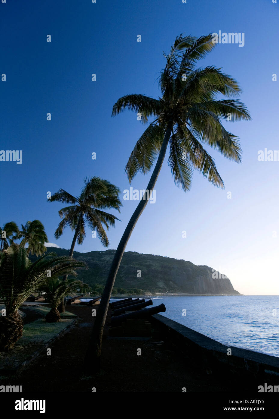Tropical contrasts - Cannons and palm trees - Saint-Denis, Réunion Stock Photo