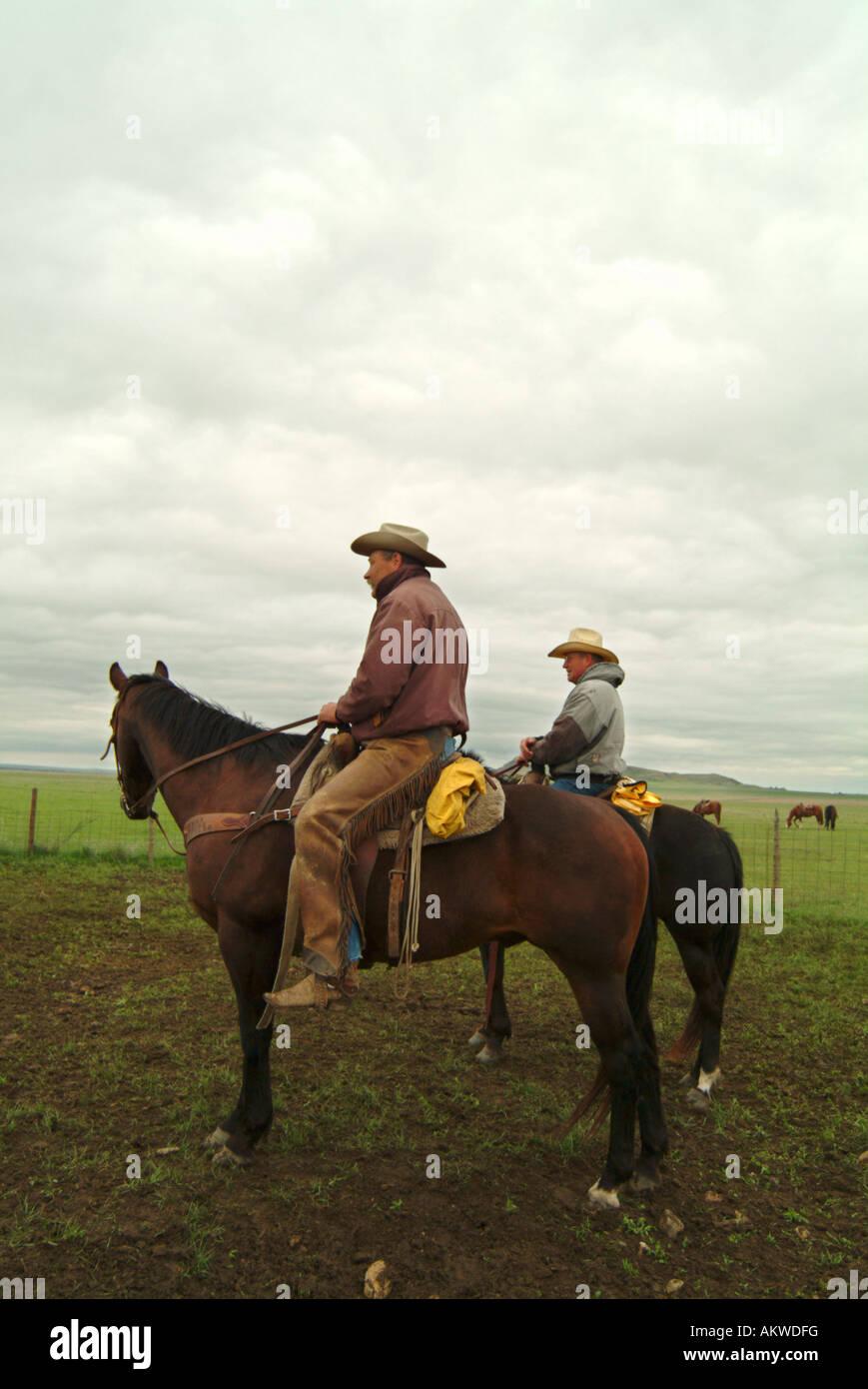 Cowboys on Logging Camp Ranch North Dakota - Stock Image