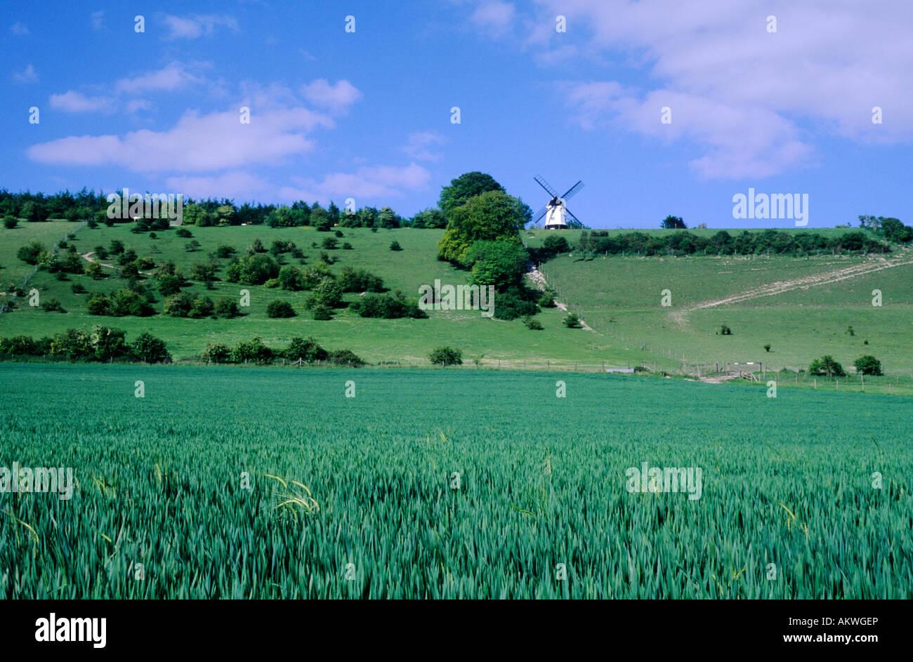Turville Buckinghamshire windmill Chilterns - Stock Image