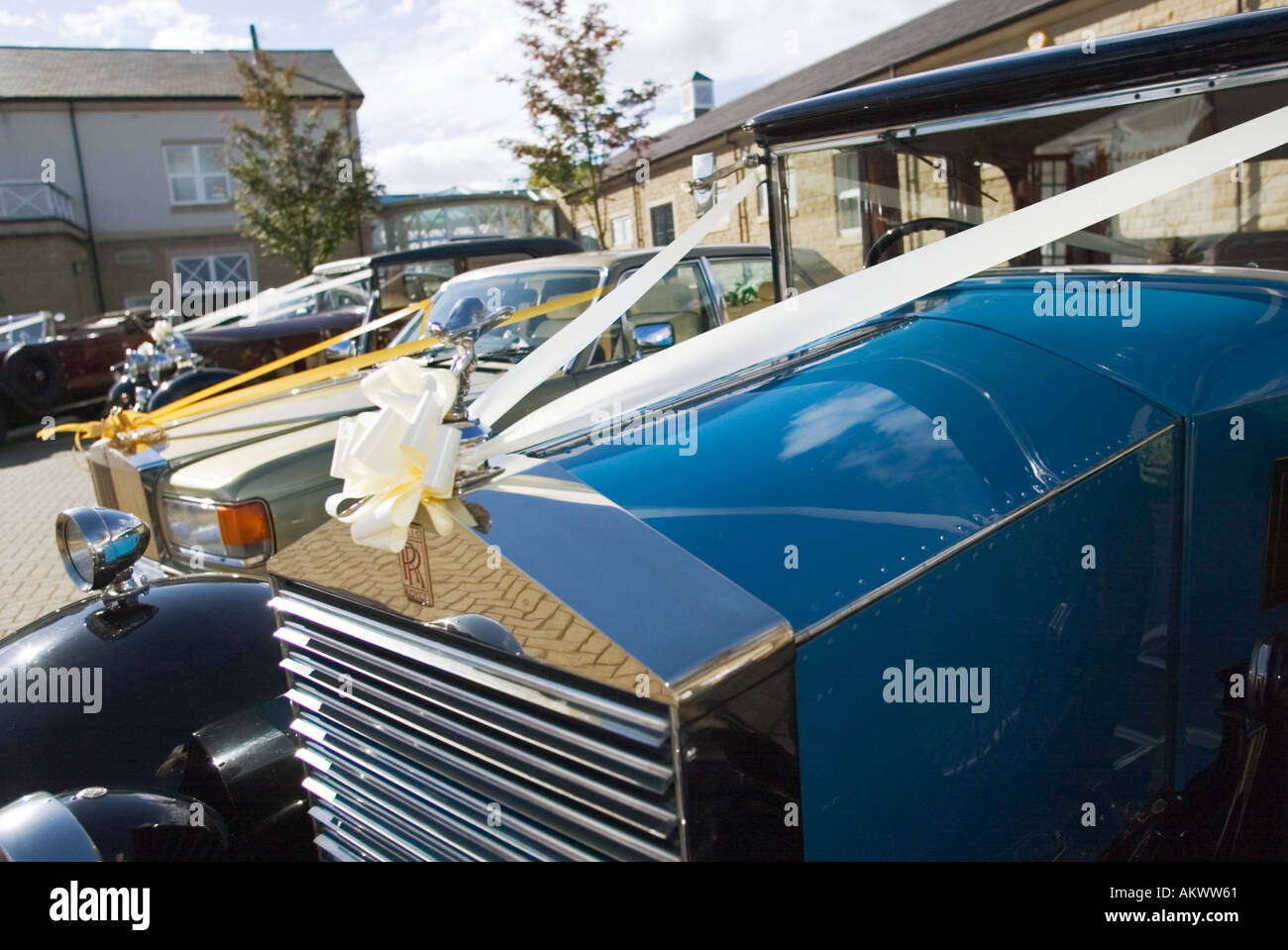 Rolls Royce wedding cars with ribbons - Stock Image